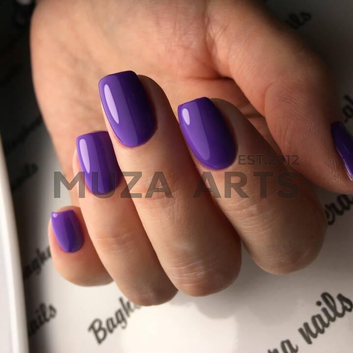 BN-16, Фиолетовый Гель-лак BAGHEERA NAILS